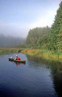 person canoeing in Itasca County in Minnesota